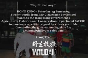 Six-year-olds from ESF Clearwater Bay School demand Hong Kong ivory ban!