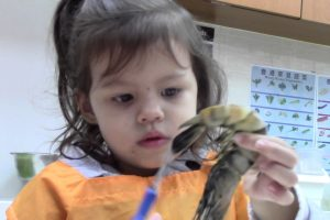 Infinity Children's School – Hong Kong Montessori School